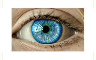 15 интересных фактов о глазах и зрении