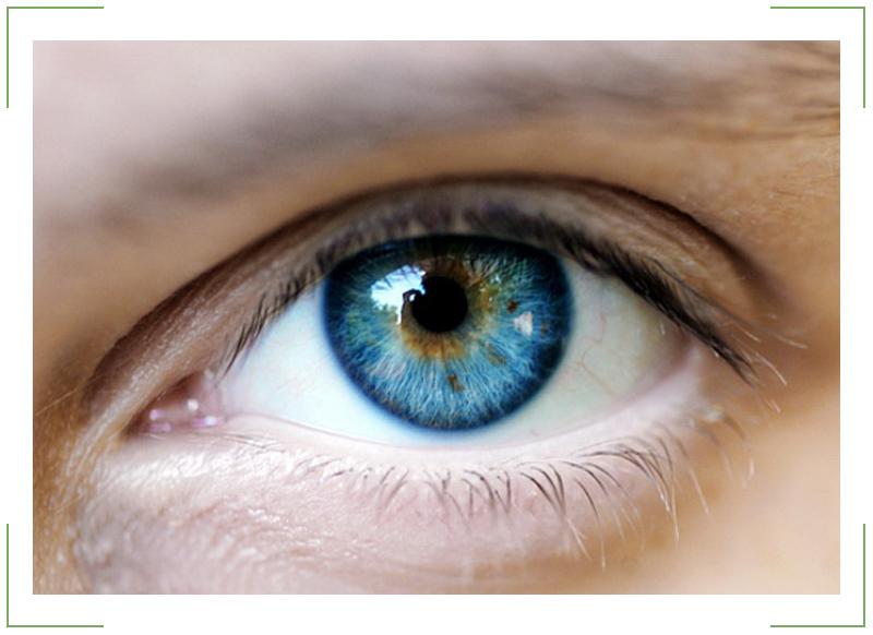 Болезни глаз: разновидности и способы лечения